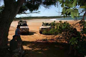 Cape York Peninsula, Northern Queensland, Australia